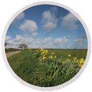 Cornish Daffodil Hedge Round Beach Towel