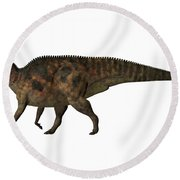 Corythosaurus On White Round Beach Towel