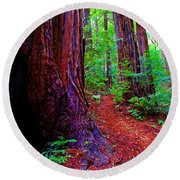 Cosmic Redwood Trail On Mt Tamalpais Round Beach Towel