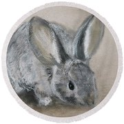 Cottontail Rabbit Round Beach Towel