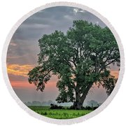 Cottonwood Pasture 2 Round Beach Towel