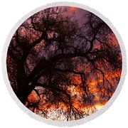 Cottonwood Sunset Silhouette Round Beach Towel