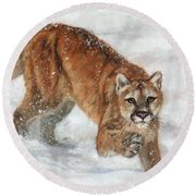 Cougar In The Snow Round Beach Towel