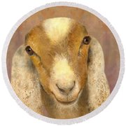 Country Charms Nubian Goat With Bright Eyes Round Beach Towel
