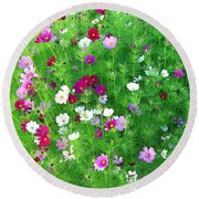 Country Cosmos Round Beach Towel