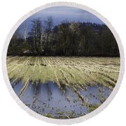 Country Living Eh Round Beach Towel