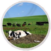 Countryside Cows Round Beach Towel