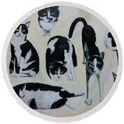 Cow Cats Round Beach Towel