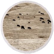 Cow Droppings Round Beach Towel