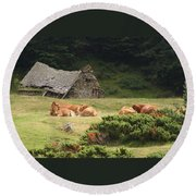 Cow Family Pastoral Round Beach Towel