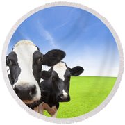 Cow On Green Grass Field Round Beach Towel
