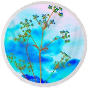 Cow Parsley Blossom 2 Round Beach Towel