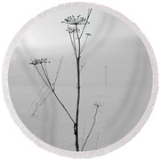 Cow Parsley Bw Round Beach Towel