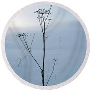 Cow Parsley Round Beach Towel