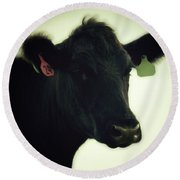 Cow In Summer Round Beach Towel