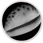 Cowry Shell In Black And White Round Beach Towel