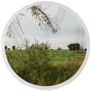 Cows And Farm In Michigan  Round Beach Towel