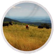 Cows At Doughton Park 2 Round Beach Towel