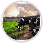 Cows At Sunset Bordered Round Beach Towel