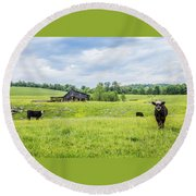 Cows In The Country Round Beach Towel