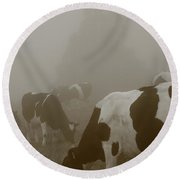 Cows In The Mist Round Beach Towel