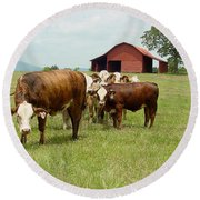 Cows8939 Round Beach Towel