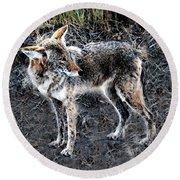 Coyote Waits Round Beach Towel