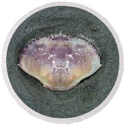 Crab 1 Round Beach Towel