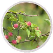 Crab Apple Fruit Round Beach Towel