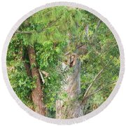 Craggy Tree For Will Round Beach Towel
