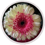 Cranberry And White Round Beach Towel