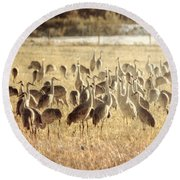 Cranes In The Morning Mist Round Beach Towel