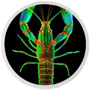Crawfish In The Dark - Orivibsat Round Beach Towel