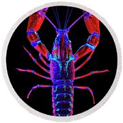 Crawfish In The Dark-  Redblue Round Beach Towel