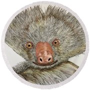 Crazy Two Toed Sloth Round Beach Towel