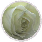 Cream Rose Round Beach Towel
