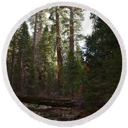 Creek And Giant Sequoias In Kings Canyon California Round Beach Towel
