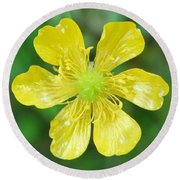Creeping Buttercup Round Beach Towel