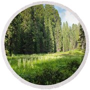Crescent Meadow In Sequoia Round Beach Towel