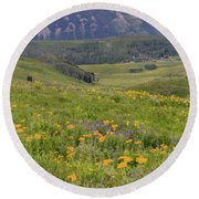 Crested Butte Valley Round Beach Towel