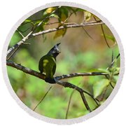 Crested Finchbill 2 Round Beach Towel