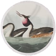 Crested Grebe Round Beach Towel