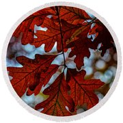 Crimson Oak Round Beach Towel