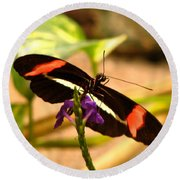 Crimson Patched Longwing 2 Round Beach Towel