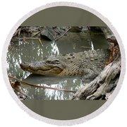 Crocodile Round Beach Towel