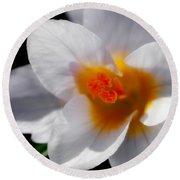 Crocus Blossom Round Beach Towel