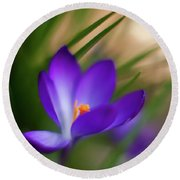 Crocus Light Round Beach Towel