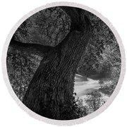 Crooked Oak Black And White Round Beach Towel