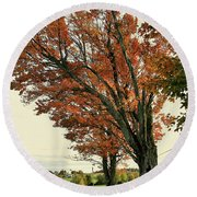 Crooked Tree Round Beach Towel