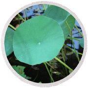 Crossing The Lily Pond Outback Number One Round Beach Towel